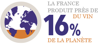 16% de la production mondiale de vin