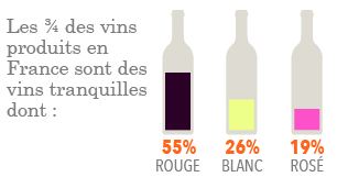 Production de vins tranquilles